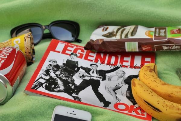 picnic stuff